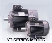 Y2 series three-phase induction motors
